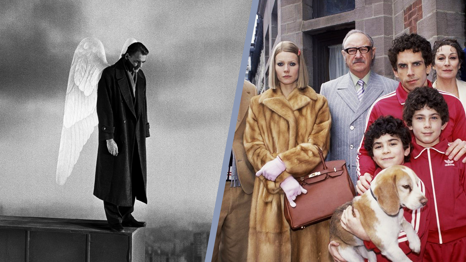 Wings of Desire & The Royal Tenenbaums