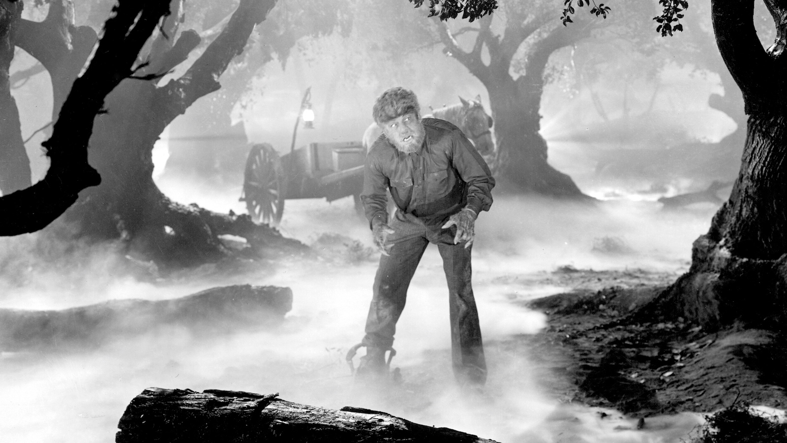 The Wolf Man & Creature from the Black Lagoon in 3D (Double Feature) |  Coolidge Corner Theater